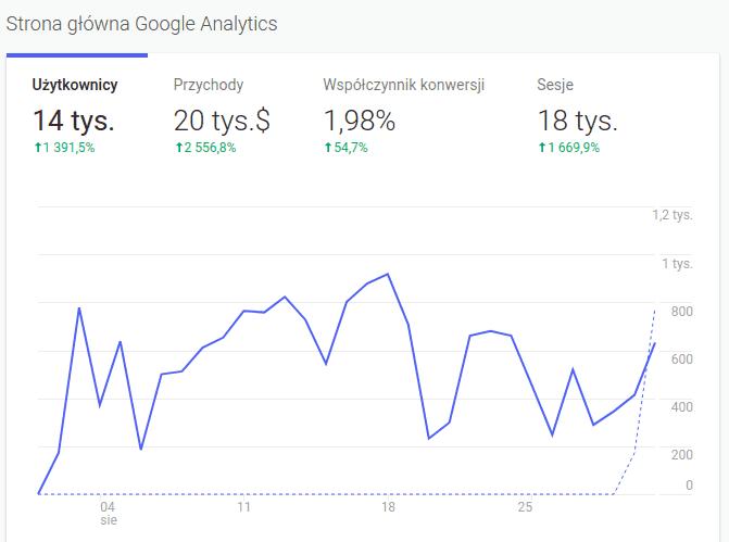 google analytics dla sklepu internetowego